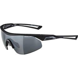 Очки ALPINA Nylos Shield Black Matt/Black Mirror