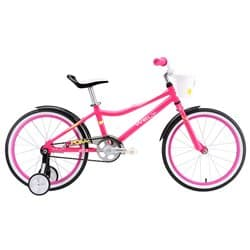 "20"" WELT Pony pink/white/green 2018"